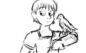 Hawklady